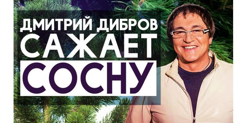 Как посадить сосну؟ Сажаем сосну с Дмитрием Дибровым
